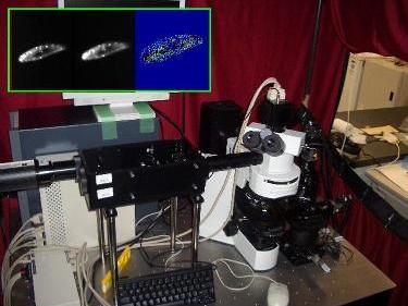 lock-on microscope
