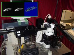 tracking microscope